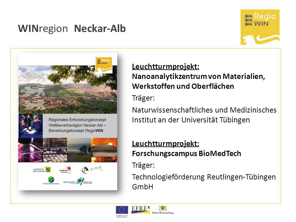 WINregion Neckar-Alb Leuchtturmprojekt: Nanoanalytikzentrum von Materialien, Werkstoffen und Oberflächen Träger: Naturwissenschaftliches und Medizinis