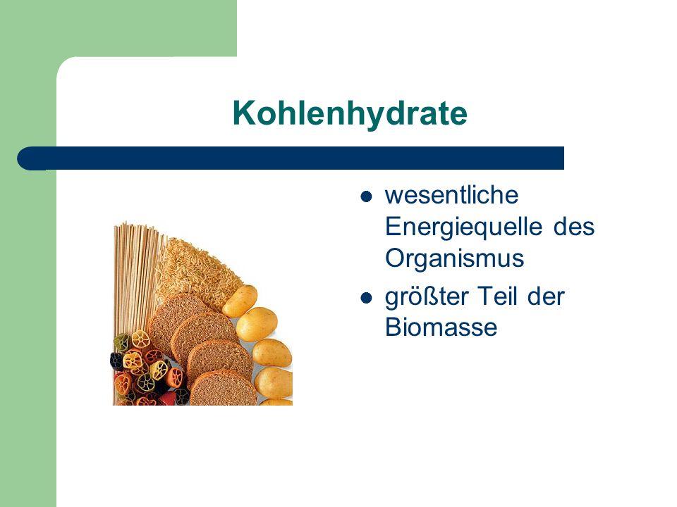 Kohlenhydrate wesentliche Energiequelle des Organismus größter Teil der Biomasse