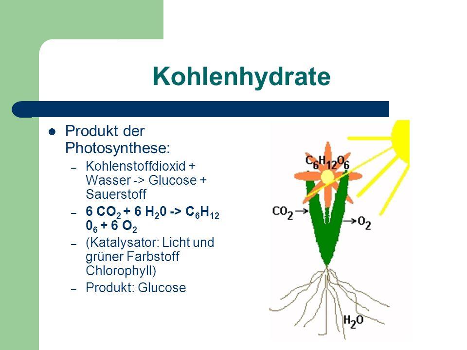 Kohlenhydrate Produkt der Photosynthese: – Kohlenstoffdioxid + Wasser -> Glucose + Sauerstoff – 6 CO 2 + 6 H 2 0 -> C 6 H 12 0 6 + 6 O 2 – (Katalysator: Licht und grüner Farbstoff Chlorophyll) – Produkt: Glucose