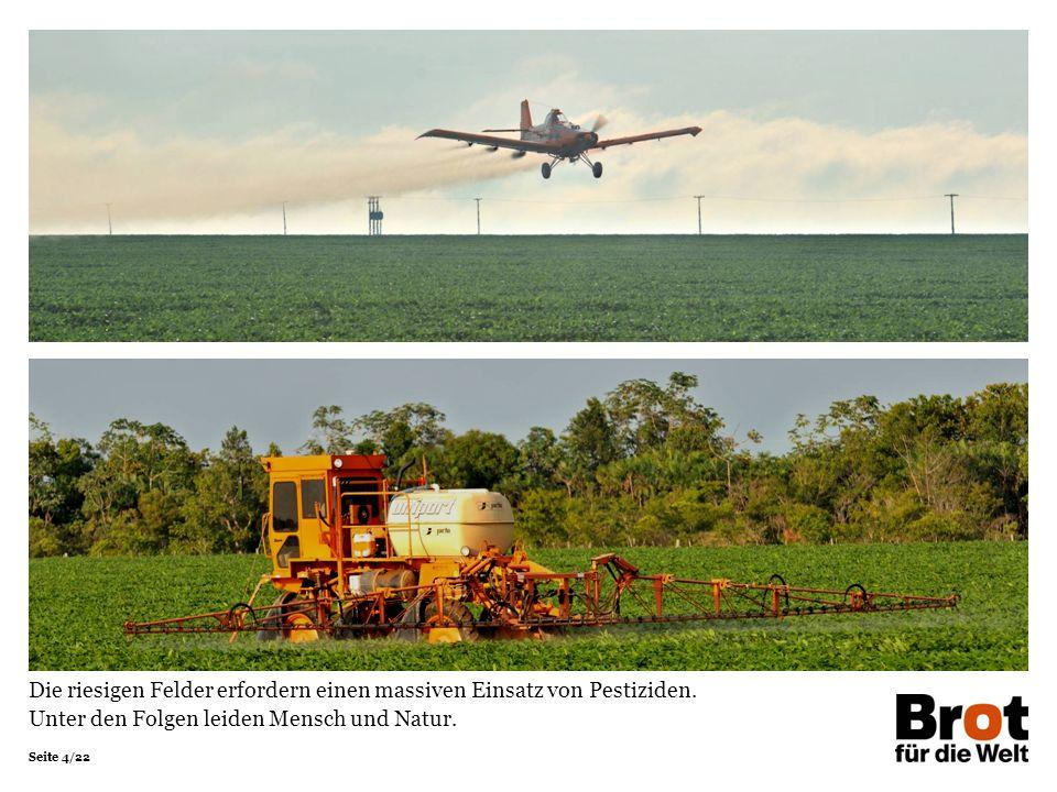 Seite 4/22 Die riesigen Felder erfordern einen massiven Einsatz von Pestiziden. Unter den Folgen leiden Mensch und Natur.