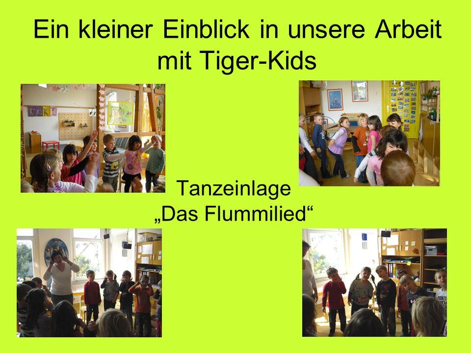 """Tanzeinlage """"Das Flummilied Ein kleiner Einblick in unsere Arbeit mit Tiger-Kids"""