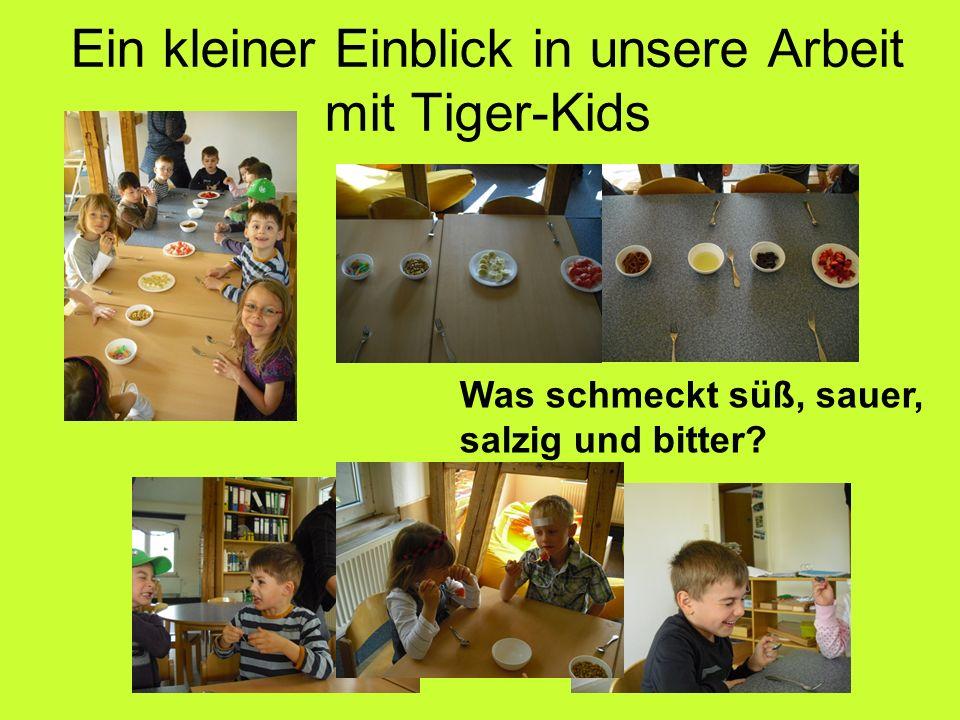 Ein kleiner Einblick in unsere Arbeit mit Tiger-Kids Was schmeckt süß, sauer, salzig und bitter