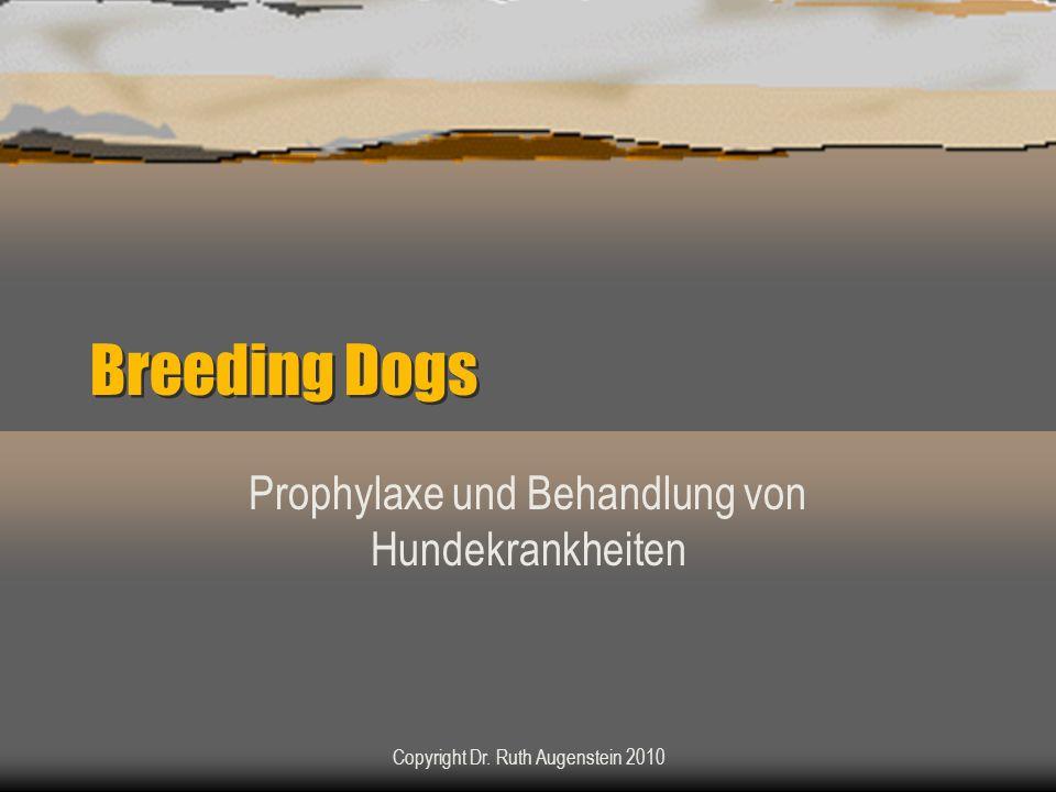 Breeding Dogs Prophylaxe und Behandlung von Hundekrankheiten Copyright Dr. Ruth Augenstein 2010