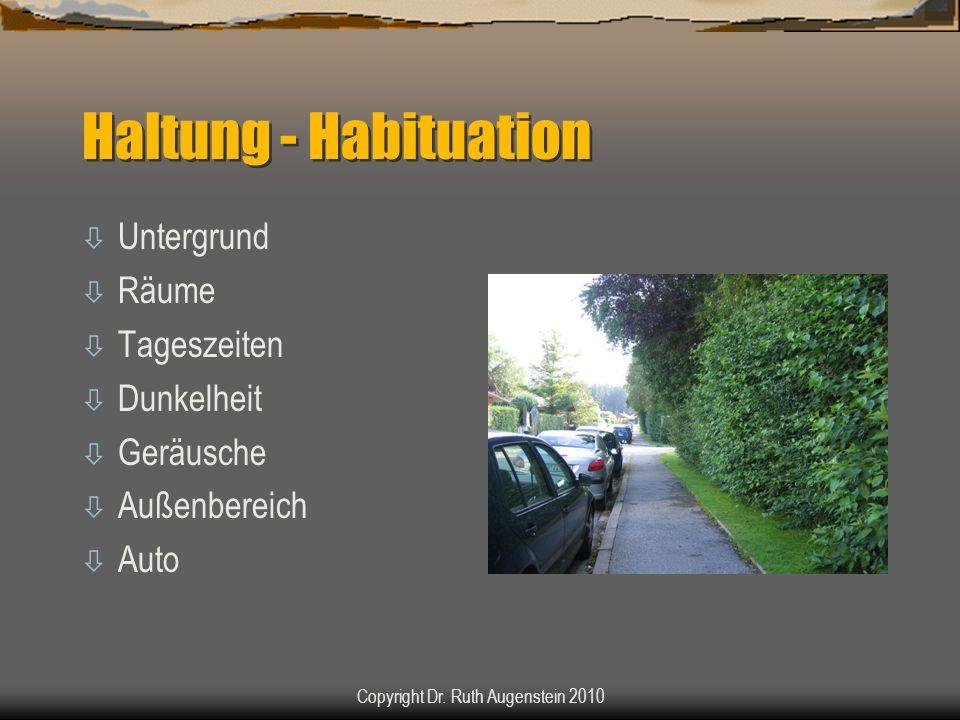 Haltung - Habituation ò Untergrund ò Räume ò Tageszeiten ò Dunkelheit ò Geräusche ò Außenbereich ò Auto Copyright Dr. Ruth Augenstein 2010