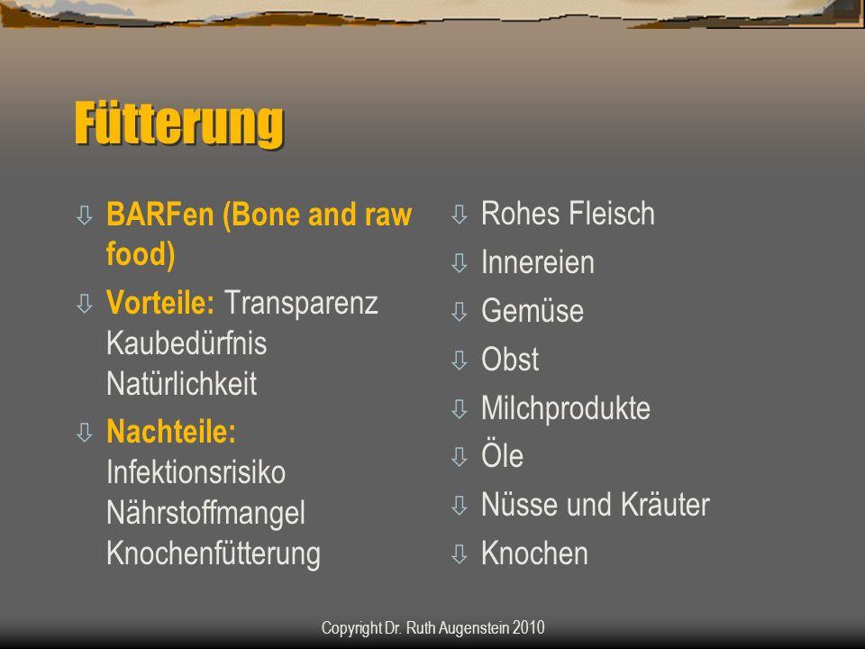 Fütterung ò BARFen (Bone and raw food) ò Vorteile: Transparenz Kaubedürfnis Natürlichkeit ò Nachteile: Infektionsrisiko Nährstoffmangel Knochenfütterung ò Rohes Fleisch ò Innereien ò Gemüse ò Obst ò Milchprodukte ò Öle ò Nüsse und Kräuter ò Knochen Copyright Dr.