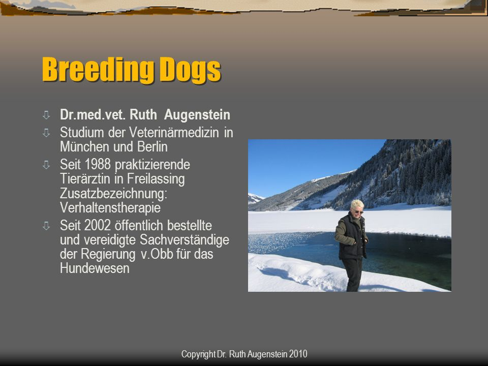 Breeding Dogs ò Dr.med.vet. Ruth Augenstein ò Studium der Veterinärmedizin in München und Berlin ò Seit 1988 praktizierende Tierärztin in Freilassing
