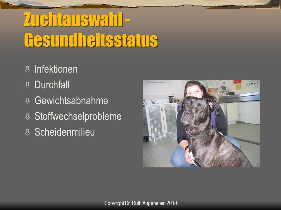 Zuchtauswahl - Gesundheitsstatus ò Infektionen ò Durchfall ò Gewichtsabnahme ò Stoffwechselprobleme ò Scheidenmilieu Copyright Dr. Ruth Augenstein 201
