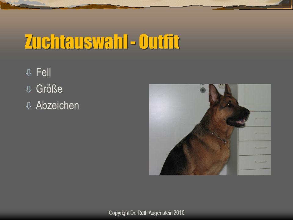 Zuchtauswahl - Outfit ò Fell ò Größe ò Abzeichen Copyright Dr. Ruth Augenstein 2010
