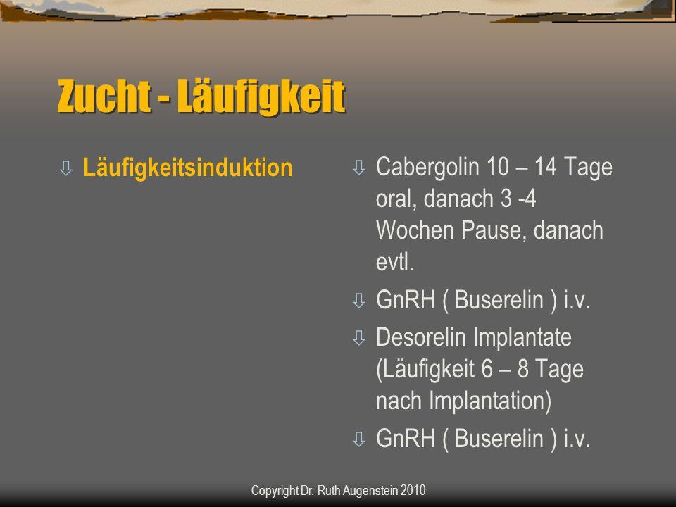 Zucht - Läufigkeit ò Läufigkeitsinduktion ò Cabergolin 10 – 14 Tage oral, danach 3 -4 Wochen Pause, danach evtl. ò GnRH ( Buserelin ) i.v. ò Desorelin