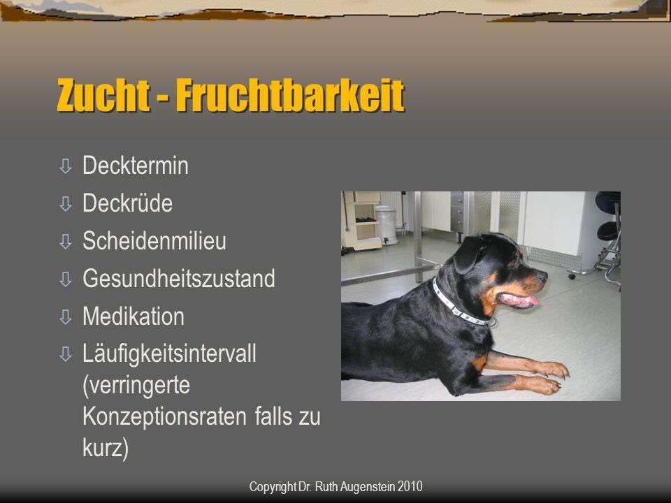 Zucht - Fruchtbarkeit ò Decktermin ò Deckrüde ò Scheidenmilieu ò Gesundheitszustand ò Medikation ò Läufigkeitsintervall (verringerte Konzeptionsraten