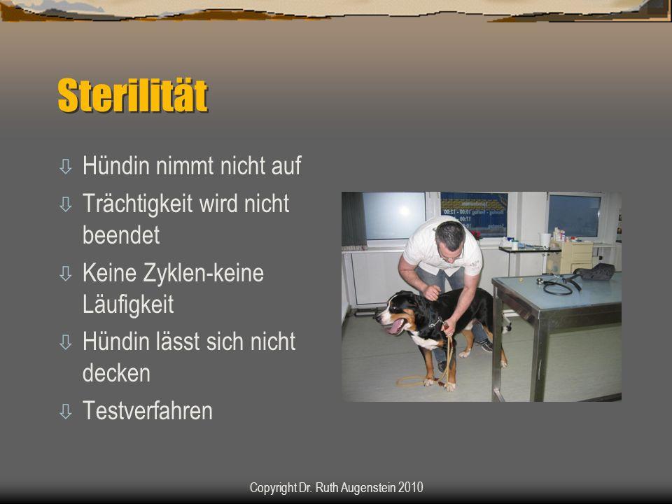 Sterilität ò Hündin nimmt nicht auf ò Trächtigkeit wird nicht beendet ò Keine Zyklen-keine Läufigkeit ò Hündin lässt sich nicht decken ò Testverfahren Copyright Dr.