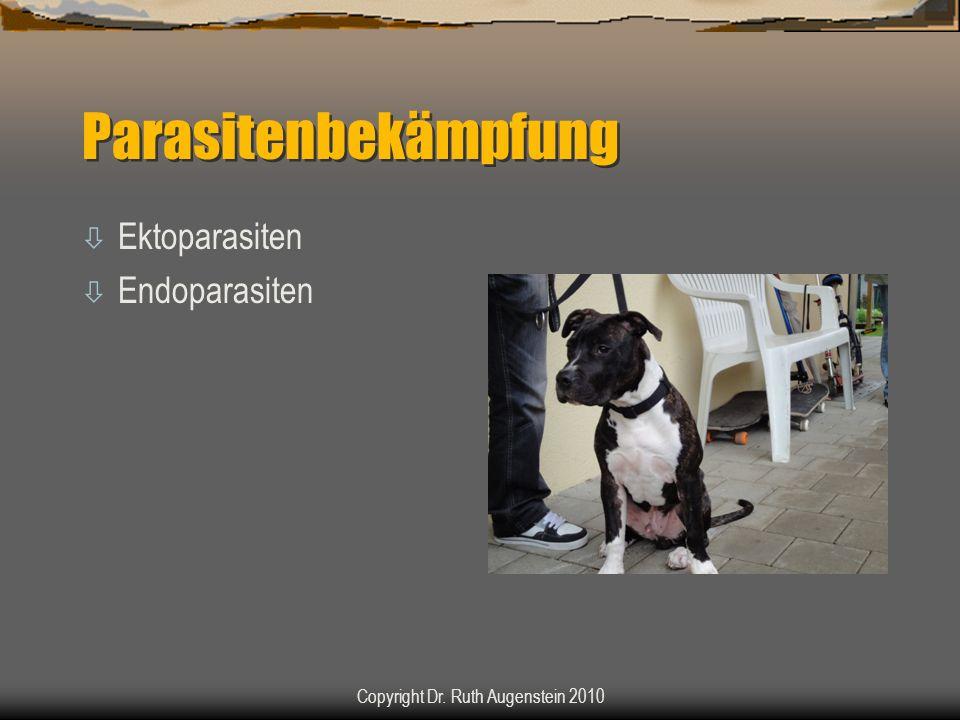 Parasitenbekämpfung ò Ektoparasiten ò Endoparasiten Copyright Dr. Ruth Augenstein 2010