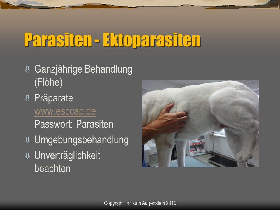 Parasiten - Ektoparasiten ò Ganzjährige Behandlung (Flöhe) ò Präparate www.esccap.de Passwort: Parasiten www.esccap.de ò Umgebungsbehandlung ò Unverträglichkeit beachten Copyright Dr.