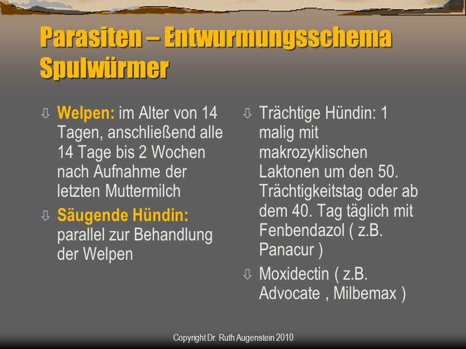 Parasiten – Entwurmungsschema Spulwürmer ò Welpen: im Alter von 14 Tagen, anschließend alle 14 Tage bis 2 Wochen nach Aufnahme der letzten Muttermilch