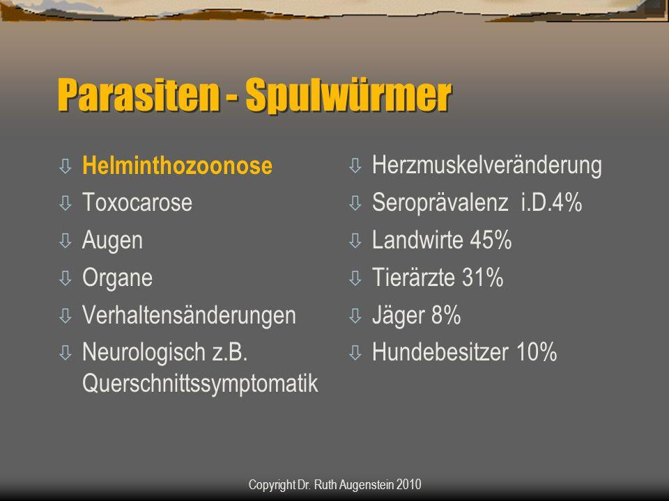 Parasiten - Spulwürmer ò Helminthozoonose ò Toxocarose ò Augen ò Organe ò Verhaltensänderungen ò Neurologisch z.B. Querschnittssymptomatik ò Herzmuske