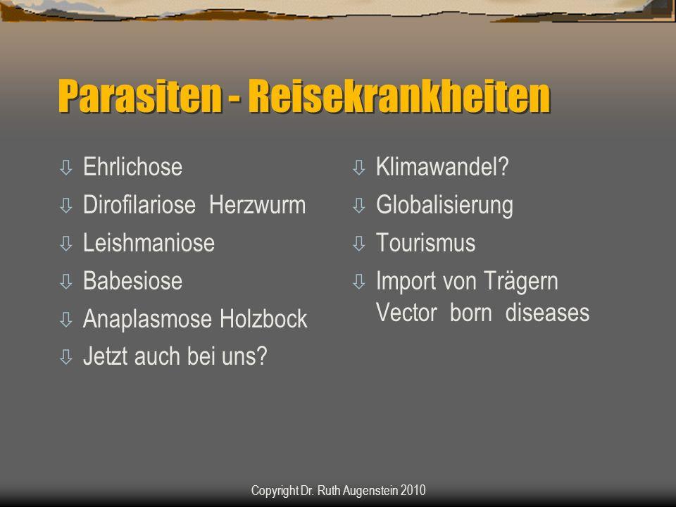 Parasiten - Reisekrankheiten ò Ehrlichose ò Dirofilariose Herzwurm ò Leishmaniose ò Babesiose ò Anaplasmose Holzbock ò Jetzt auch bei uns? ò Klimawand
