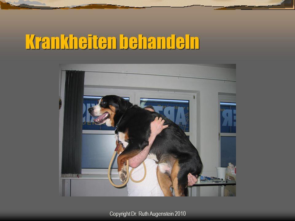 Krankheiten behandeln Copyright Dr. Ruth Augenstein 2010