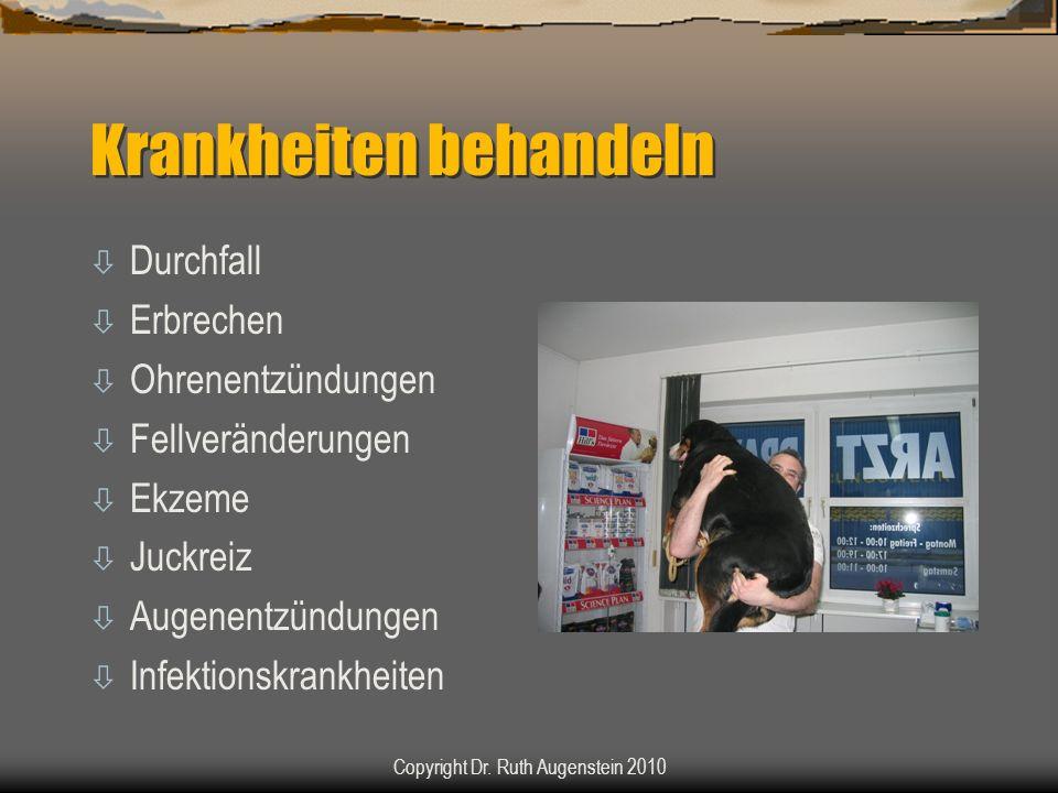 Krankheiten behandeln ò Durchfall ò Erbrechen ò Ohrenentzündungen ò Fellveränderungen ò Ekzeme ò Juckreiz ò Augenentzündungen ò Infektionskrankheiten Copyright Dr.