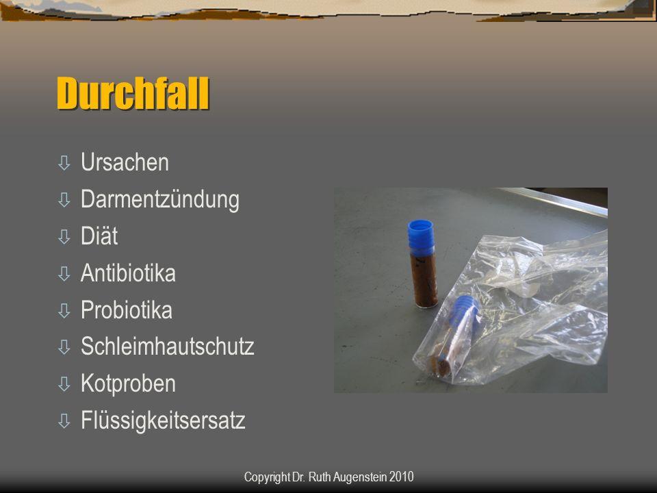 Durchfall ò Ursachen ò Darmentzündung ò Diät ò Antibiotika ò Probiotika ò Schleimhautschutz ò Kotproben ò Flüssigkeitsersatz Copyright Dr. Ruth Augens