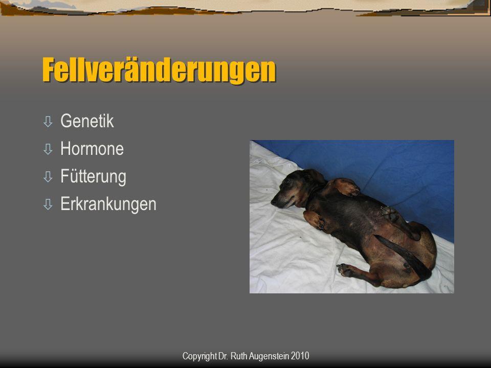 Fellveränderungen ò Genetik ò Hormone ò Fütterung ò Erkrankungen Copyright Dr. Ruth Augenstein 2010