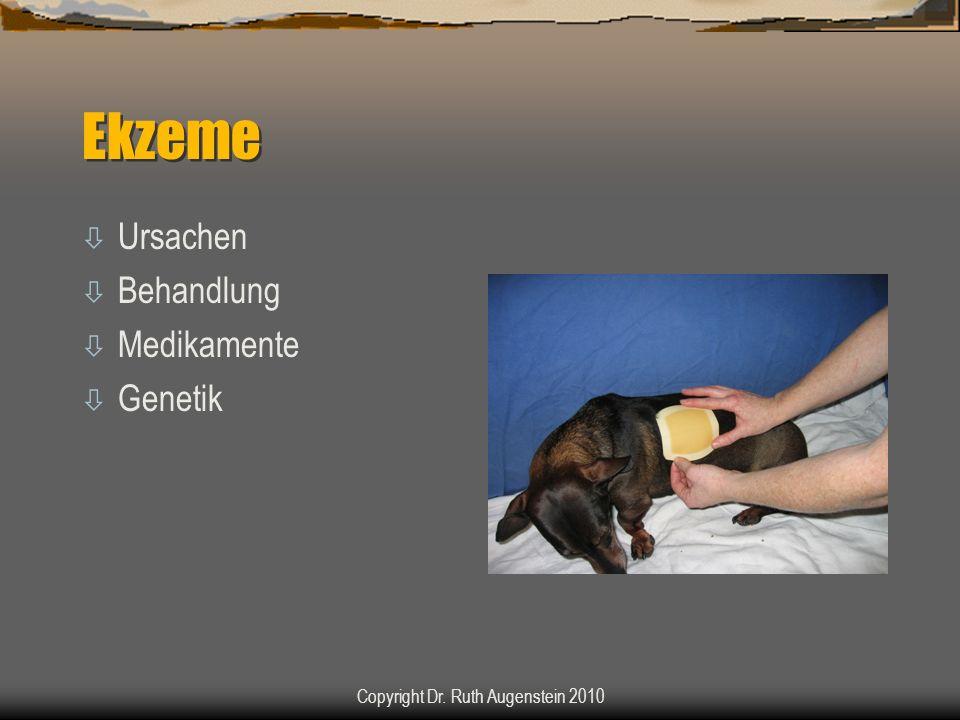 Ekzeme ò Ursachen ò Behandlung ò Medikamente ò Genetik Copyright Dr. Ruth Augenstein 2010