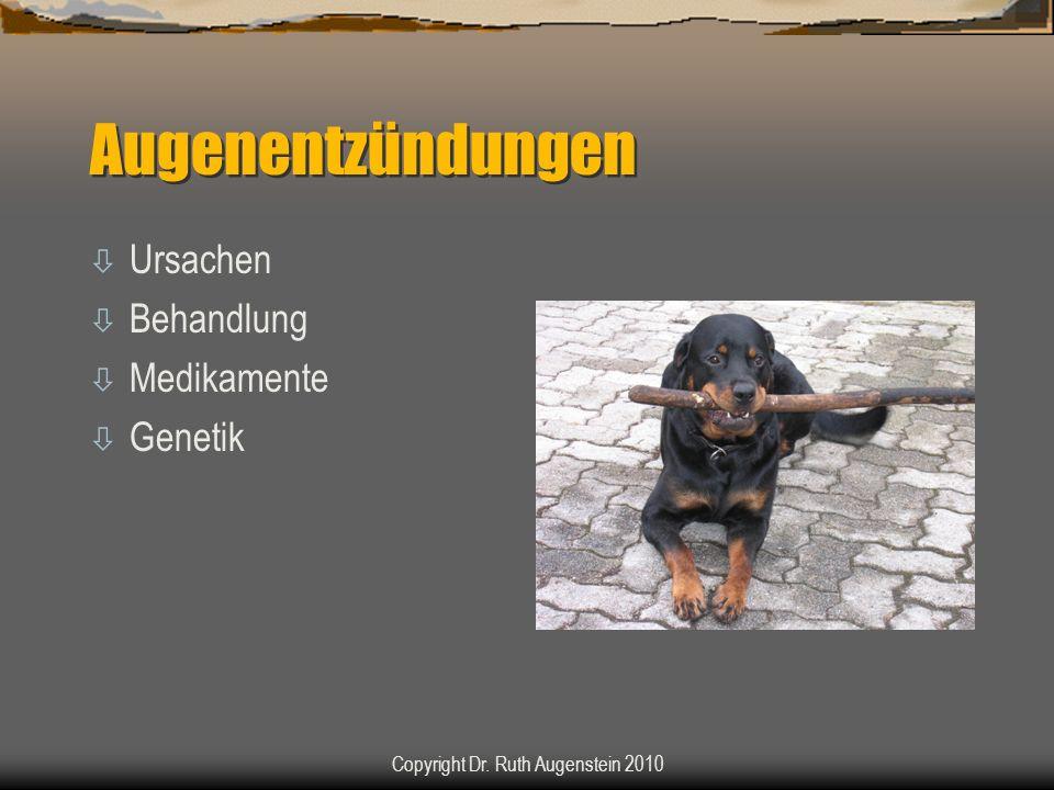 Augenentzündungen ò Ursachen ò Behandlung ò Medikamente ò Genetik Copyright Dr. Ruth Augenstein 2010