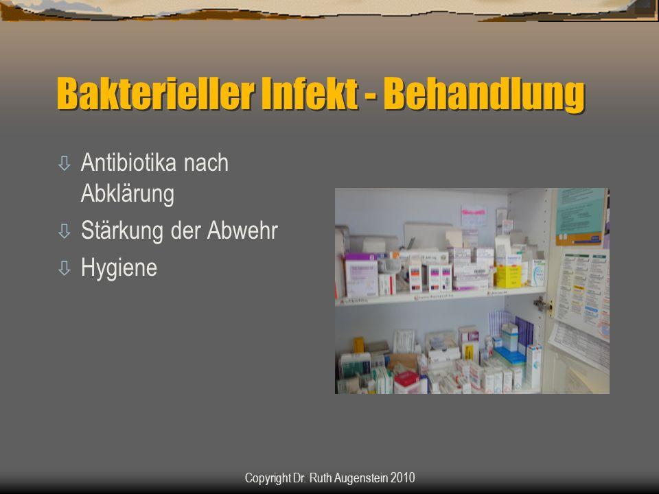 Bakterieller Infekt - Behandlung ò Antibiotika nach Abklärung ò Stärkung der Abwehr ò Hygiene Copyright Dr. Ruth Augenstein 2010