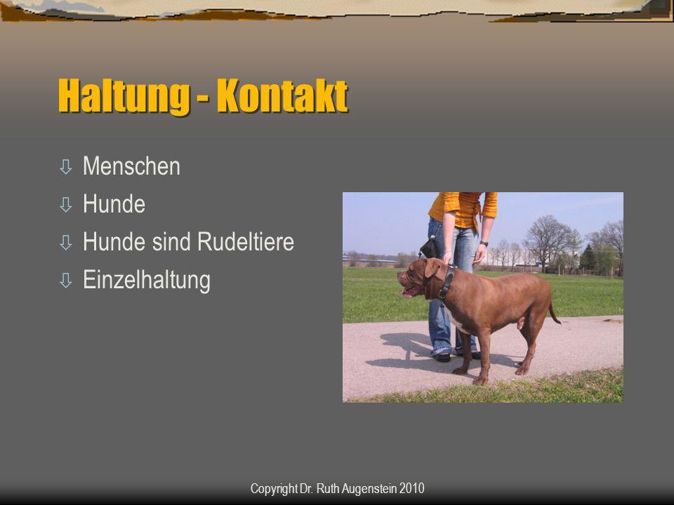 Haltung - Kontakt ò Menschen ò Hunde ò Hunde sind Rudeltiere ò Einzelhaltung Copyright Dr. Ruth Augenstein 2010