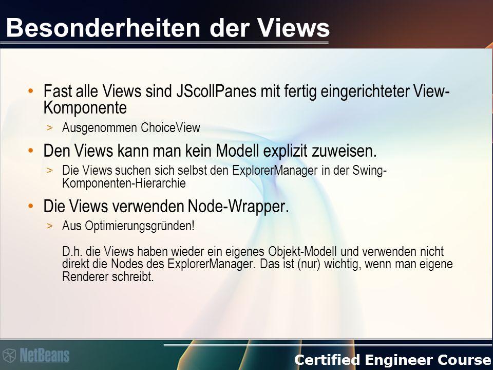 Certified Engineer Course Besonderheiten der Views Fast alle Views sind JScollPanes mit fertig eingerichteter View- Komponente > Ausgenommen ChoiceView Den Views kann man kein Modell explizit zuweisen.