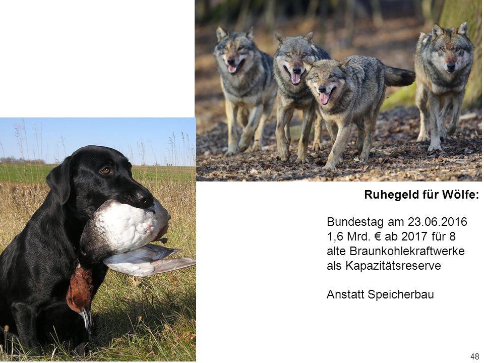 48 Ruhegeld für Wölfe: Bundestag am 23.06.2016 1,6 Mrd. € ab 2017 für 8 alte Braunkohlekraftwerke als Kapazitätsreserve Anstatt Speicherbau