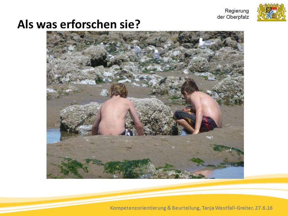 Kompetenzorientierung & Beurteilung, Tanja Westfall-Greiter, 27.6.16 Als was erforschen sie