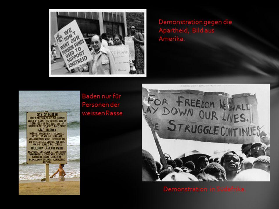 Baden nur für Personen der weissen Rasse. Demonstration gegen die Apartheid, Bild aus Amerika.