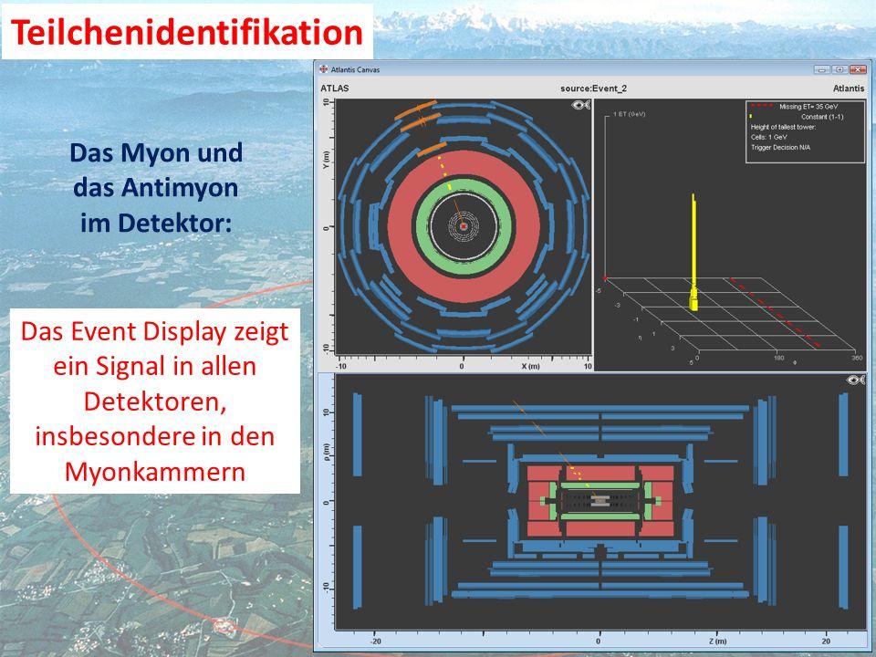 Das Event Display zeigt ein Signal in allen Detektoren, insbesondere in den Myonkammern Das Myon und das Antimyon im Detektor: Teilchenidentifikation