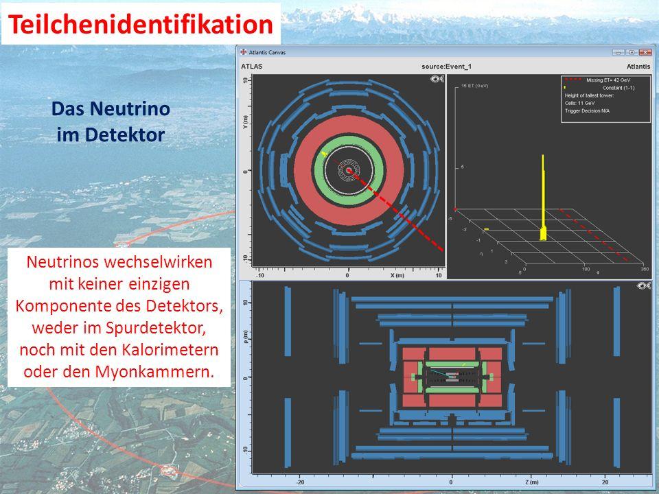 Das Neutrino im Detektor Neutrinos wechselwirken mit keiner einzigen Komponente des Detektors, weder im Spurdetektor, noch mit den Kalorimetern oder den Myonkammern.