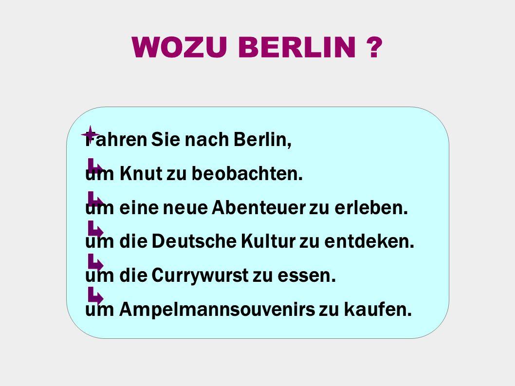 WOZU BERLIN . Fahren Sie nach Berlin, um Knut zu beobachten.