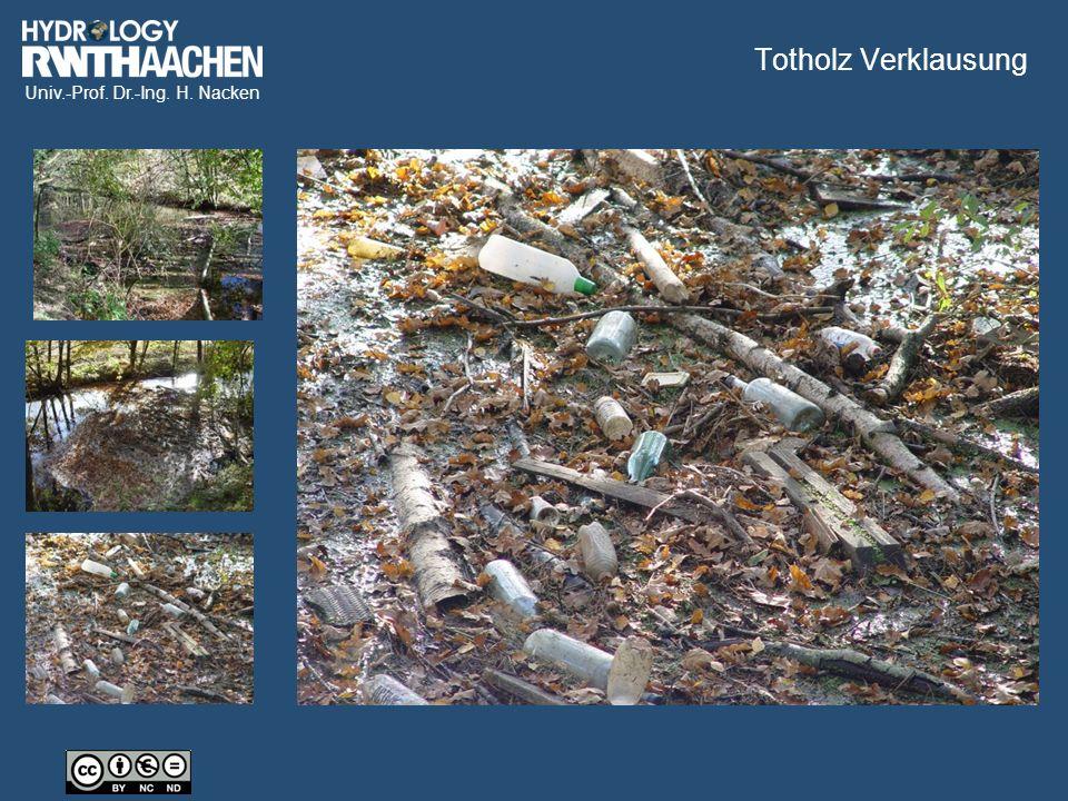 Univ.-Prof. Dr.-Ing. H. Nacken Totholz Verklausung