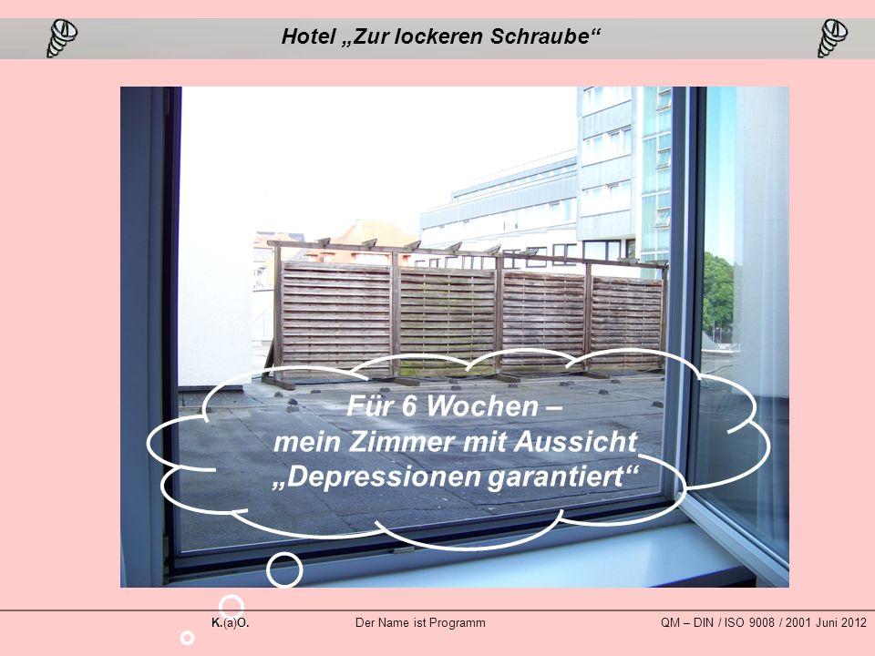 """Für 6 Wochen – mein Zimmer mit Aussicht """"Depressionen garantiert Hotel """"Zur lockeren Schraube K.O."""
