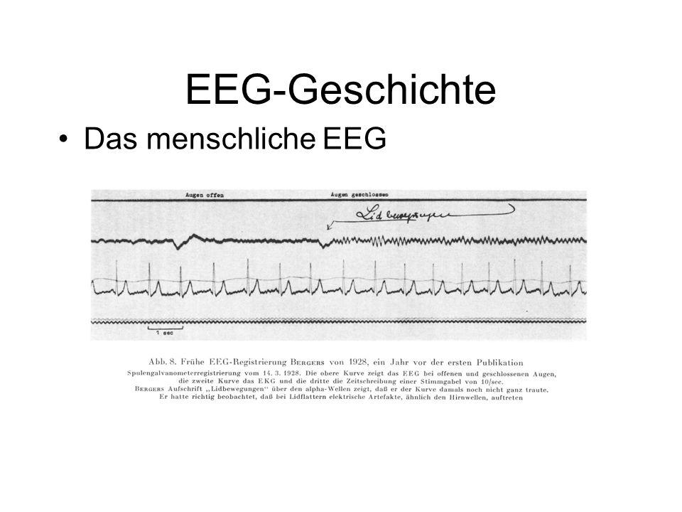 EEG-Geschichte Das menschliche EEG