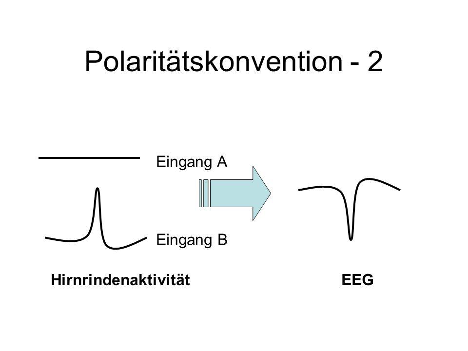 Polaritätskonvention - 2 Eingang A Eingang B HirnrindenaktivitätEEG