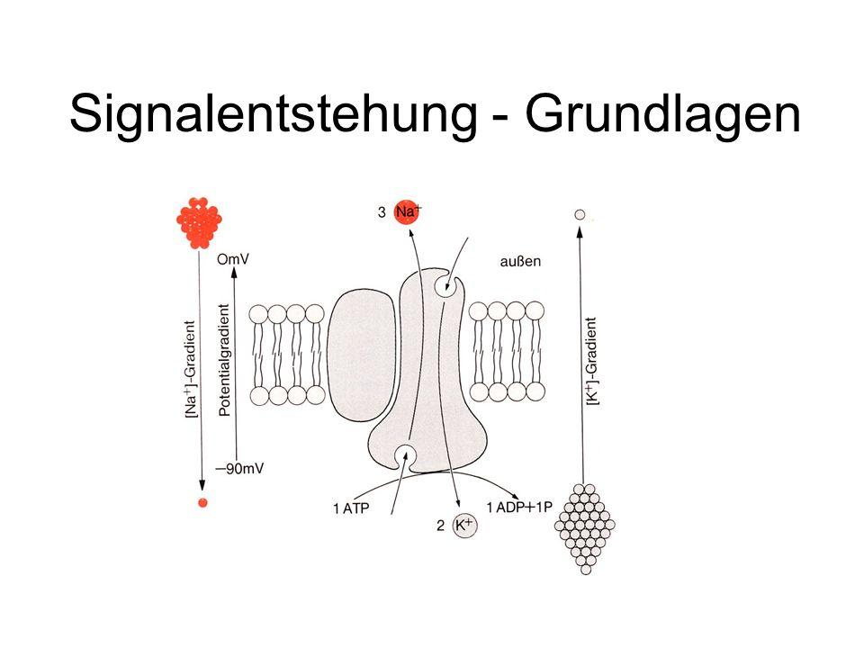 Ionenkanäle - ligandengesteuert - spannungsabhängig
