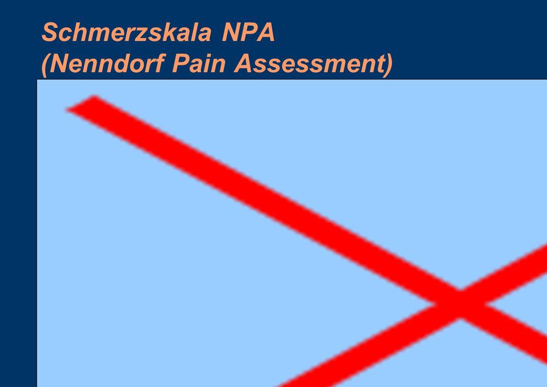 Schmerzskala NPA (Nenndorf Pain Assessment)