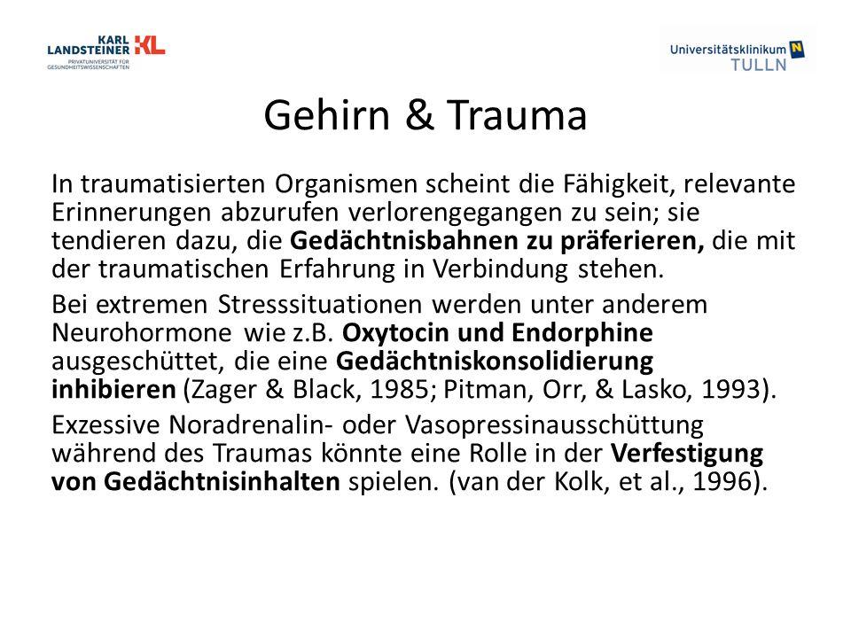 Gehirn & Trauma In traumatisierten Organismen scheint die Fähigkeit, relevante Erinnerungen abzurufen verlorengegangen zu sein; sie tendieren dazu, die Gedächtnisbahnen zu präferieren, die mit der traumatischen Erfahrung in Verbindung stehen.