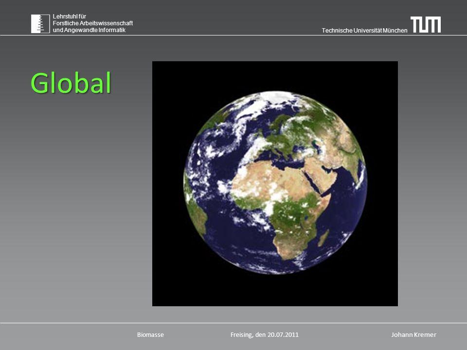 """Technische Universität München Lehrstuhl für Forstliche Arbeitswissenschaft und Angewandte Informatik BiomasseFreising, den 20.07.2011 Johann Kremer """"Die Welt hat Fieber"""