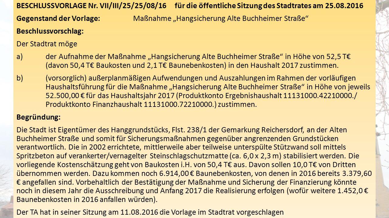 """BESCHLUSSVORLAGE Nr. VII/III/25/25/08/16 für die öffentliche Sitzung des Stadtrates am 25.08.2016 Gegenstand der Vorlage: Maßnahme """"Hangsicherung Alte"""