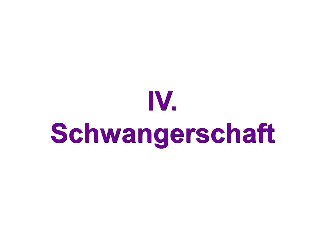 IV. Schwangerschaft