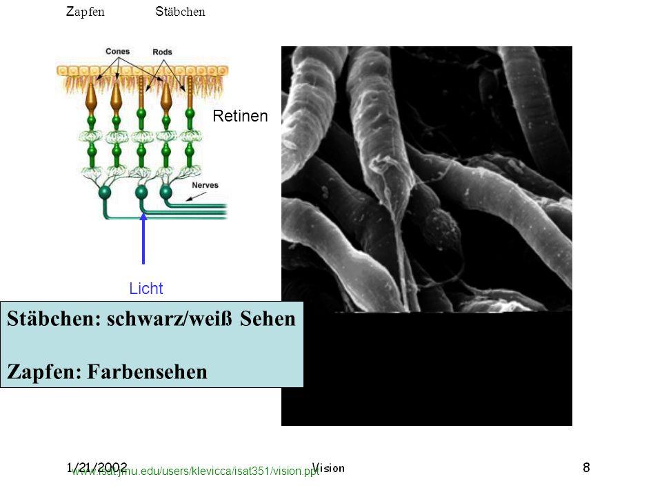 www.isat.jmu.edu/users/klevicca/isat351/vision.ppt Stäbchen: schwarz/weiß Sehen Zapfen: Farbensehen Licht Z apfen St äbchen Retinen