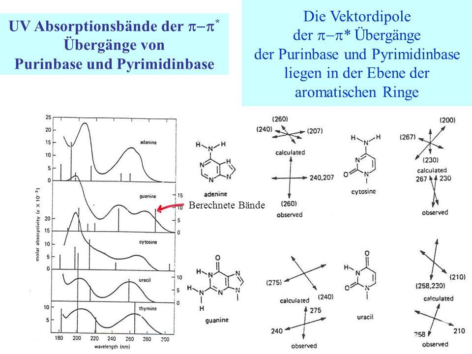 UV Absorptionsbände der  * Übergänge von Purinbase und Pyrimidinbase Die Vektordipole der  * Übergänge der Purinbase und Pyrimidinbase liegen in der Ebene der aromatischen Ringe Berechnete Bände