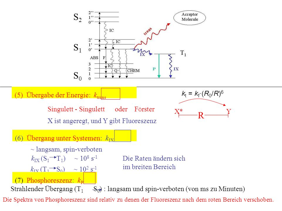 (5) Übergabe der Energie: k trans Singulett - Singulett oder F Ö rster X ist angeregt, und Y gibt Fluoreszenz R X*Y (6) Übergang unter Systemen: k IX ~ langsam, spin-verboten k IX (S 1 T 1 ) ~ 10 8 s -1 k IX (T 1 S 0 ) ~ 10 2 s -1 Die Raten ändern sich im breiten Bereich (7) Phosphoreszenz: k P Strahlender Übergang (T 1 S 0 ) : langsam und spin-verboten (von ms zu Minuten) Die Spektra von Phosphoreszenz sind relativ zu denen der Fluoreszenz nach dem roten Bereich verschoben.