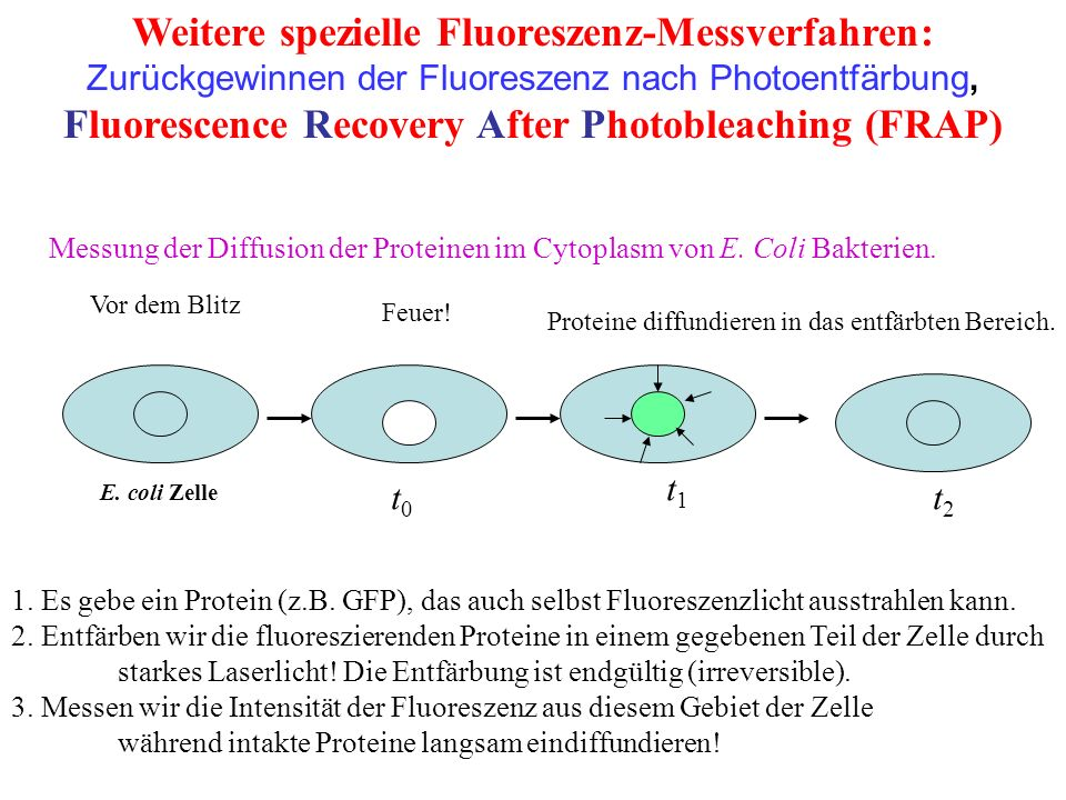 Weitere spezielle Fluoreszenz-Messverfahren: Zurückgewinnen der Fluoreszenz nach Photoentfärbung, Fluorescence Recovery After Photobleaching (FRAP) 1.