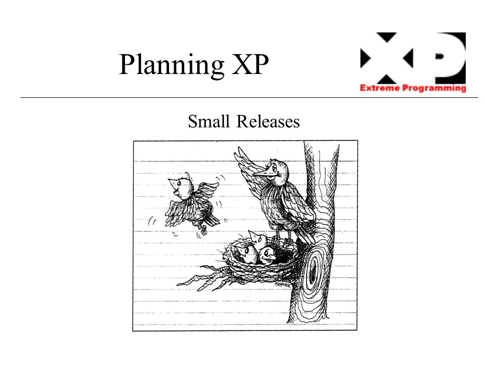 Planning XP Small Releases